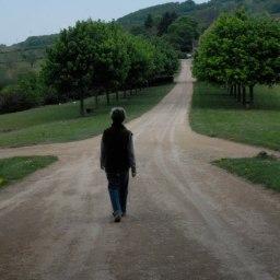 IL CONFLITTO DECISIONALE – QUANDO RISULTA DIFFICILE SCEGLIERE
